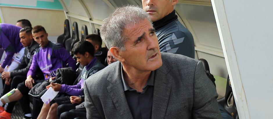 Paco Herrera en el banquillo del estadio José Zorrilla antes del inicio de un reciente partido <em><strong>(RealValladolid.es)</strong></em>
